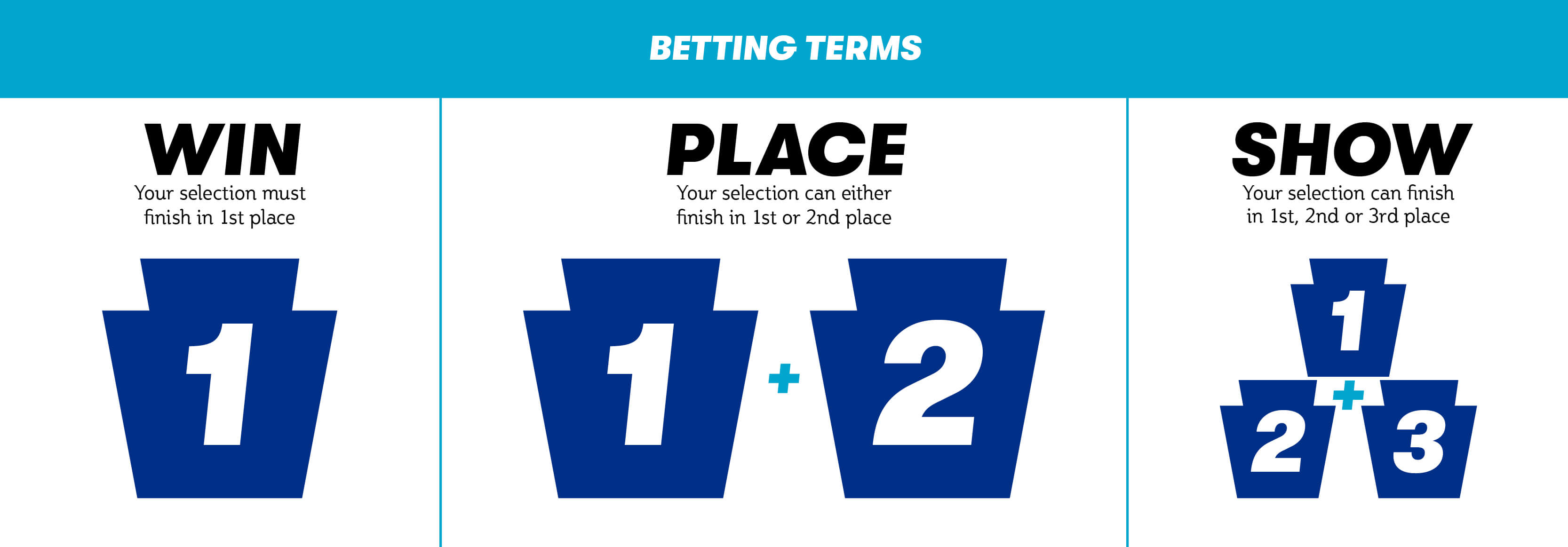 Horse Racing Place Terms