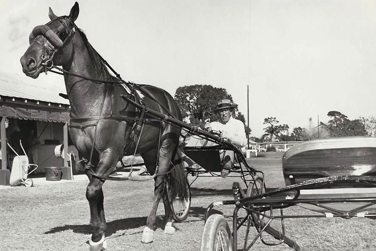 Pennsylvania Horse Racing — Harness Racing