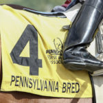 Pennsylvania Bred cloth on horse