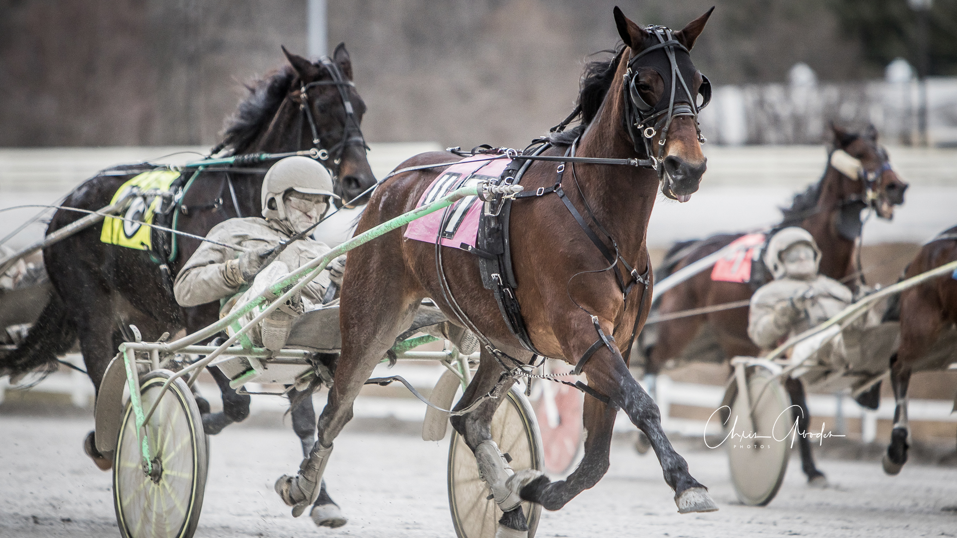 Pennsylvania Horse Racing  U2014 Harness Racing